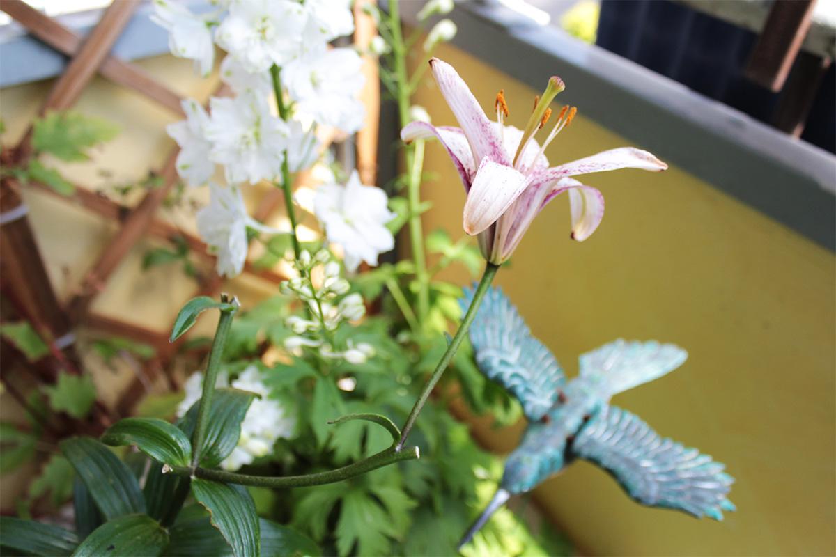 Rittersporn und Lilien