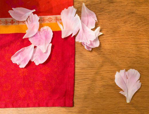 Blütenblätter einer Pfingstrose liegen auf einem Holztisch, darunter ein bunter Läufer