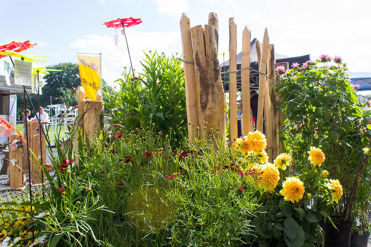 Ein Staketenzaun mit bunten Blumen drumherum