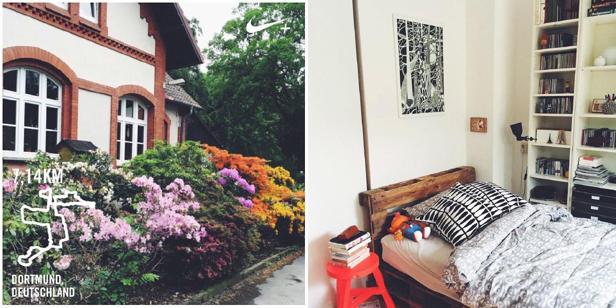 Süd-West-Friedhof in Dortmund mit blühenden Rhododendren, Ausschnitt aus einem Apartment mit Palettenbett