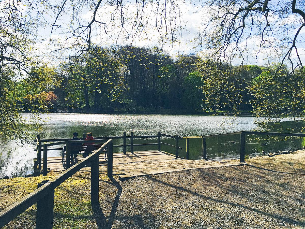 Jakobsweg Westfalen Rombergpark Dortmund