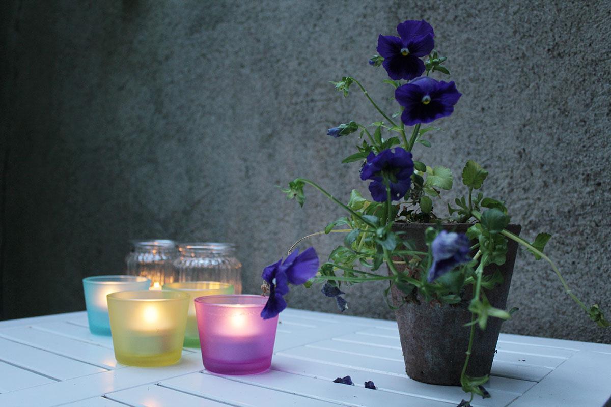 Ein Stillleben aus verschiedenfarbigen Windlichtern und einem blühenden Veilchen in einem Blumentopf