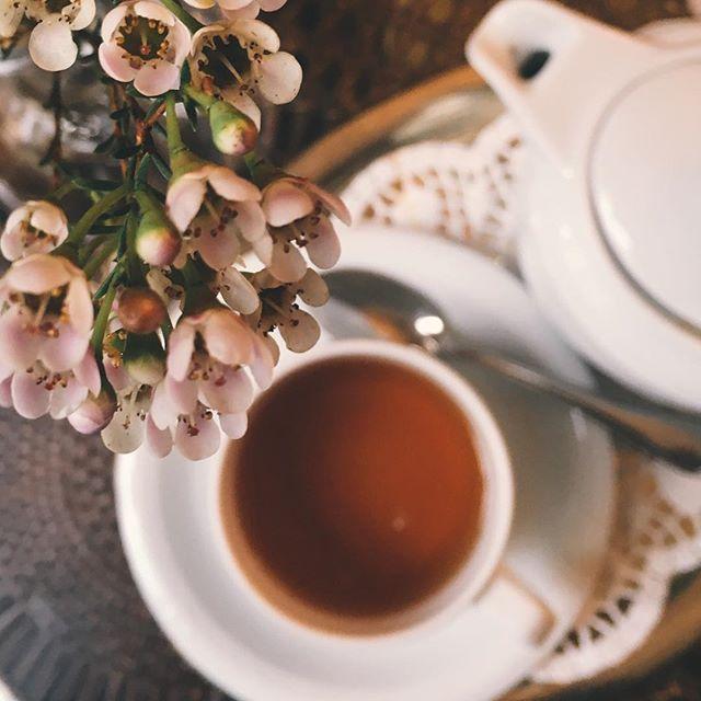 Ein Teegedeck steht auf einem Tisch, im Vordergrund ein Blütenzweig