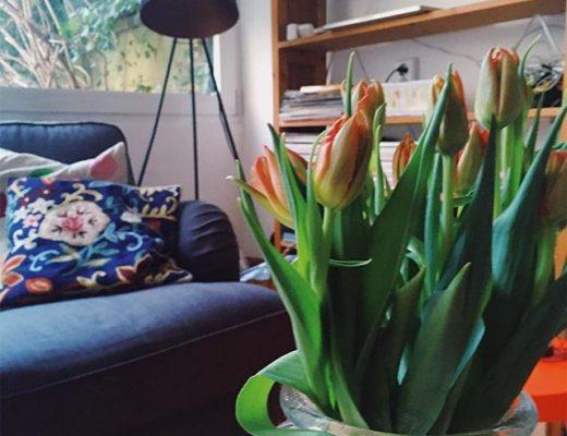 Tulpen in einer Vase stehen auf einem Couchtisch in einem Wohnzimmer