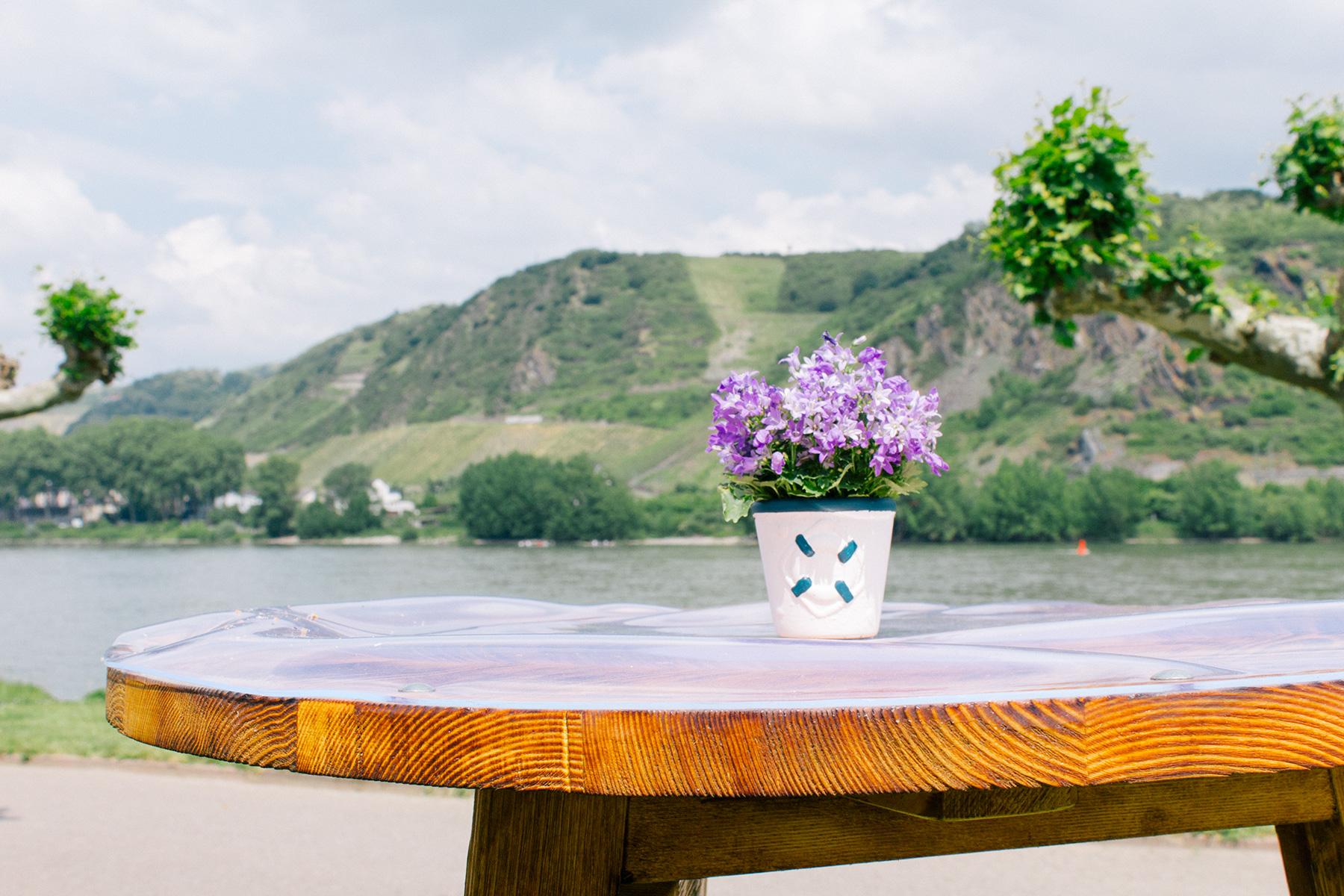 Ein Blumentopf steht auf einem Tisch dahinter eine Rheinlandschaft bei Andernach