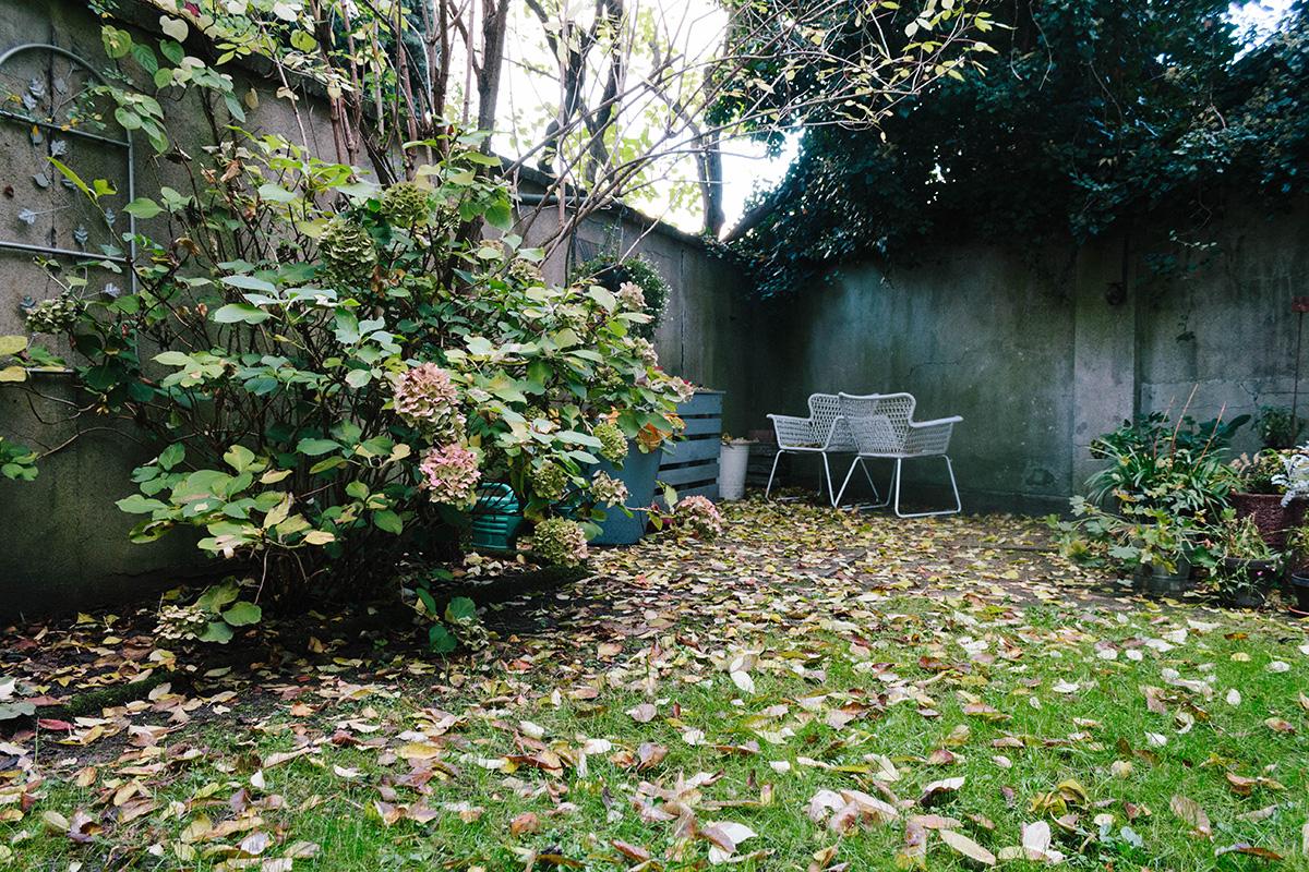 Gartenansicht im Herbst – eine Rasenfläche von Blätter übersät