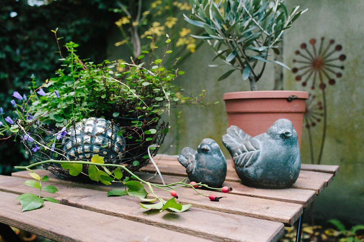 Gartenansicht im Herbst – Stillleben aus Mühlenbeckia, Olivenbaum aund Vögeln aus Ton