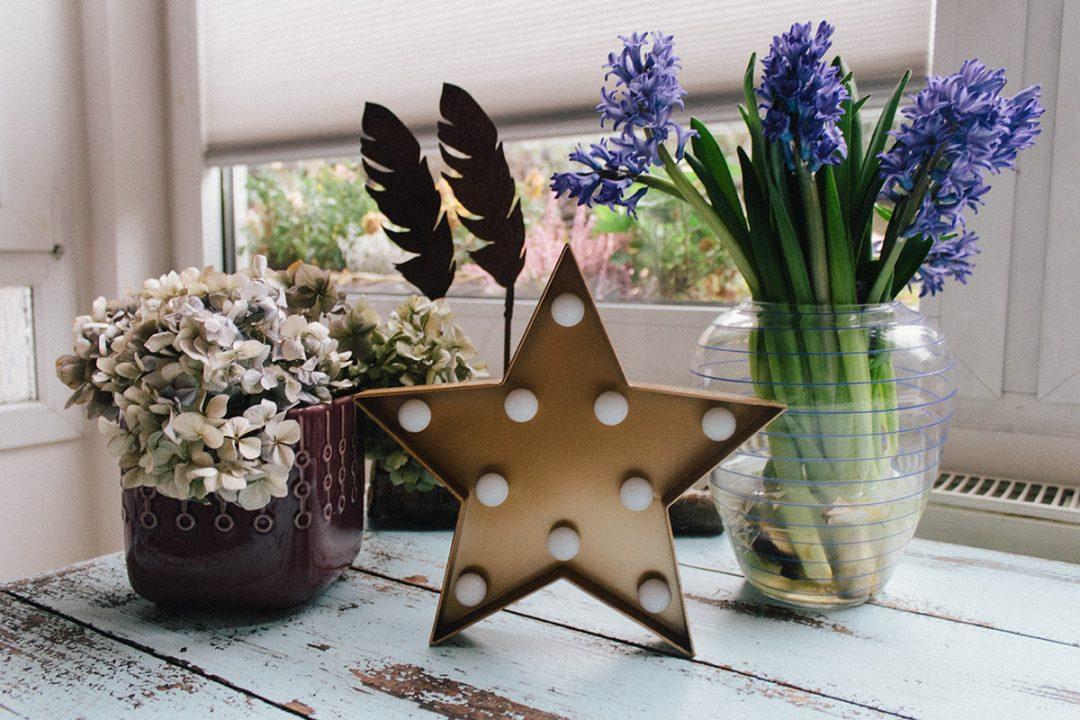 Stilleben aus verschiedenen getrockneten Blumen und einem Strauß blauer Hyazinthen