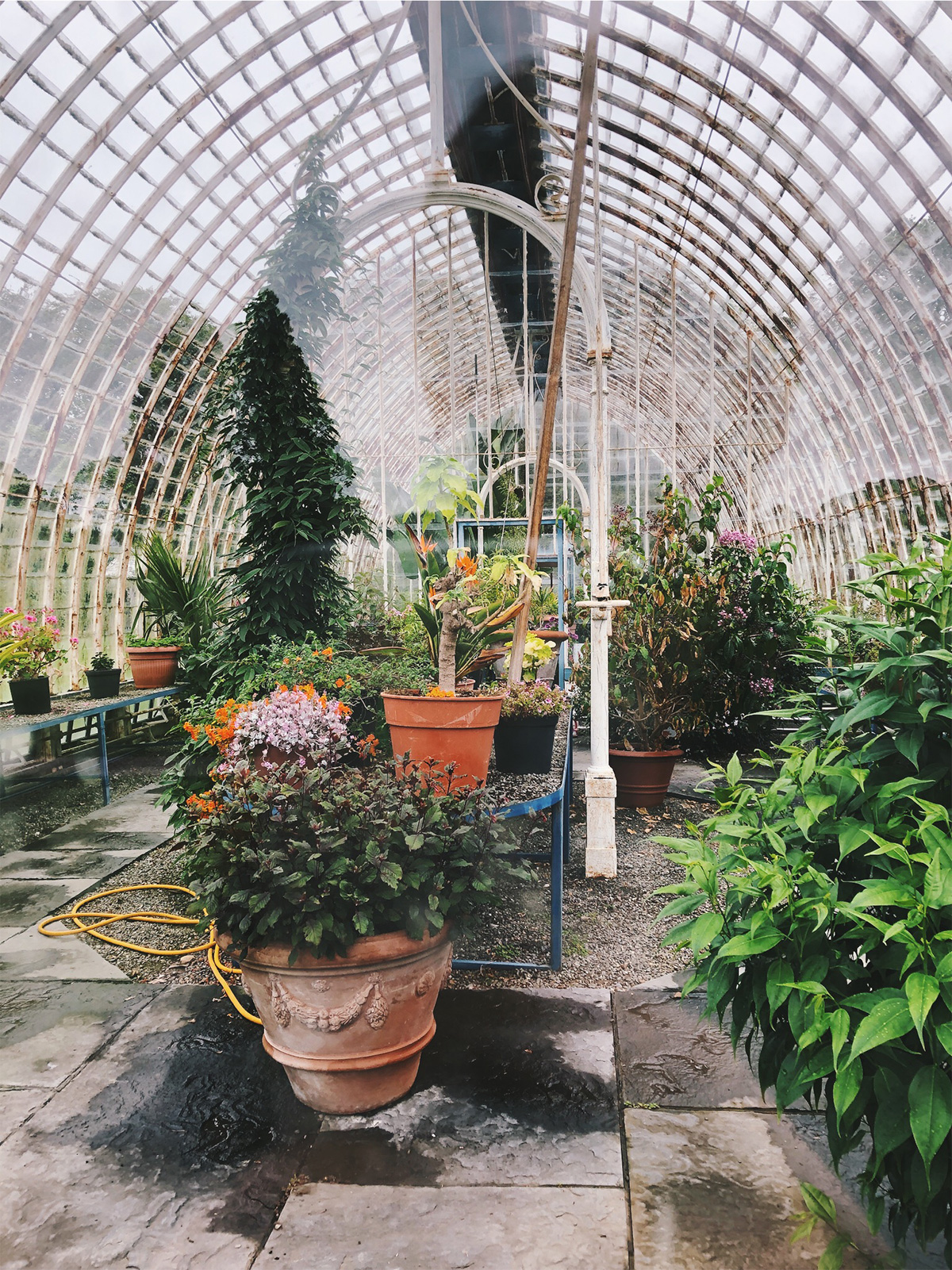 Irland Kerry Muckrose House Greenhouse