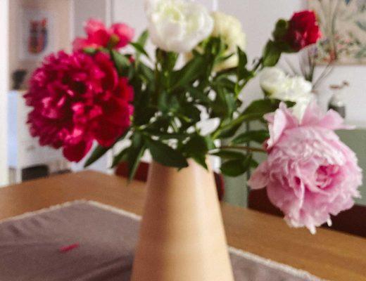 Bunte Pfingstrosen in einer konischen Vase von bloomon